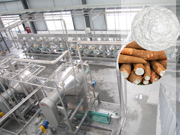 Cassava starch production plant project