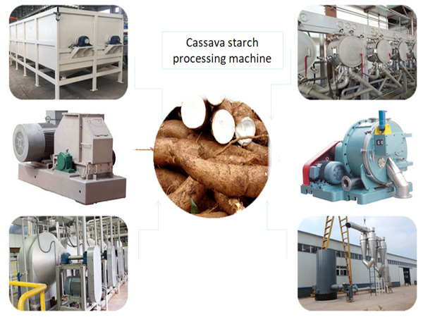 What is the process of extracting starch from cassava?