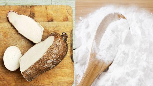 Cost analysis of establishment of a cassava starch
