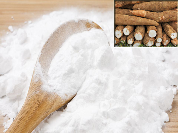 Reasons for low starch extraction rate in cassava processing