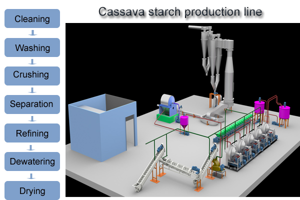 how to process cassava into starch