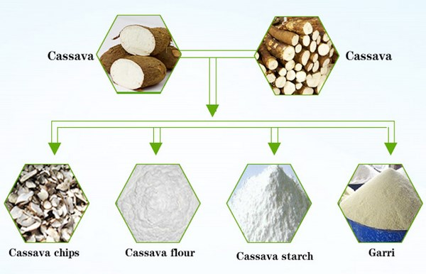 Cassava processing machines and their prices_Industry news