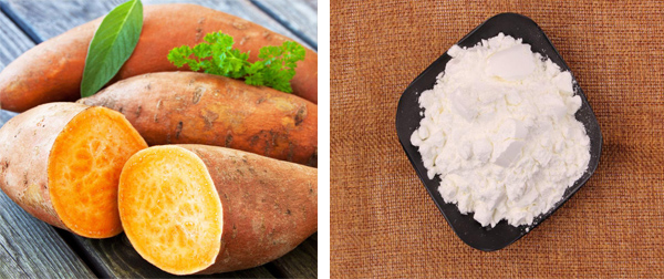 sweet potato starch industry in China