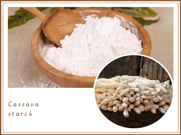 what can cassava be processed into